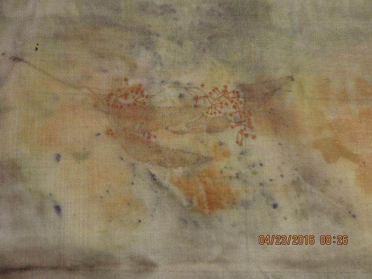 (3)-7- detail with eucalyptus