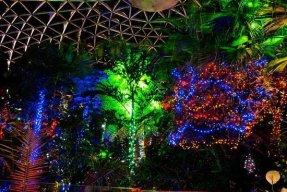bloedel-floral-conservatory